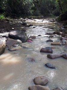 The baptism river